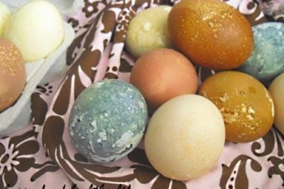 Easter Eggs – Dyed Naturally