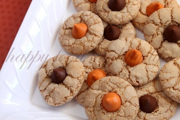 Cinnamon Pumpkin Spice Cookies