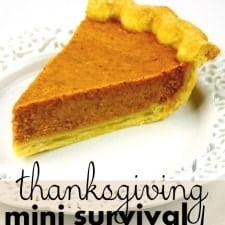 Thanksgiving mini Survival Guide