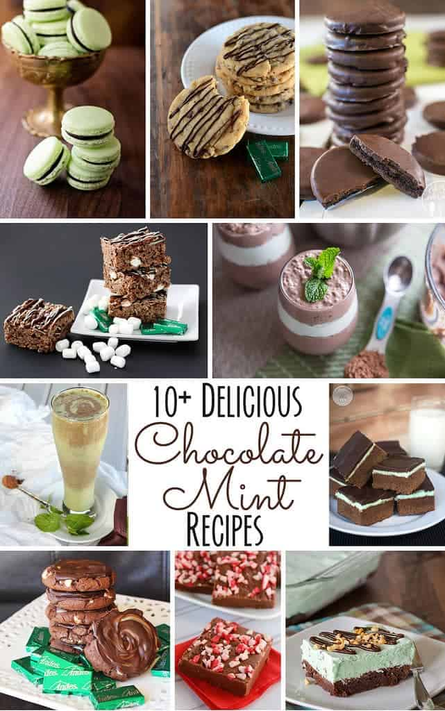 10+ Chocolate Mint Recipes | www.happyfoodhealthylife.com