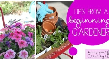 Tips-for-a-Beginning-Gardener11FB