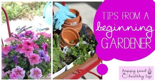 Tips from a Beginning Gardener