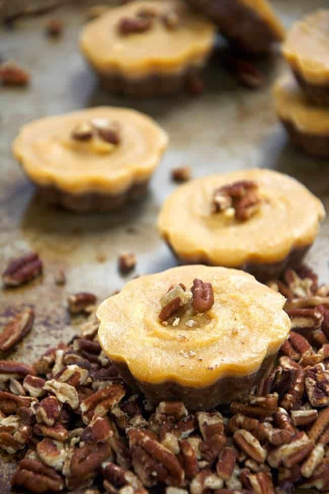 No-Bake-Pecan-Pumpkin-Pie-Bites