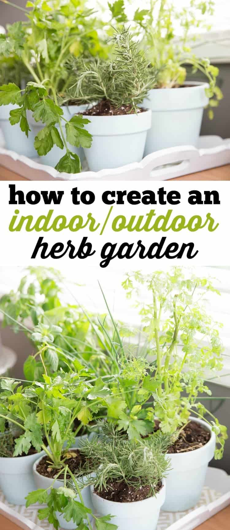 This indoor/outdoor herb garden is perfect all year long and will help you to achieve the best fresh herbs for your homemade meals, adding a ton of flavor and pizzazz.