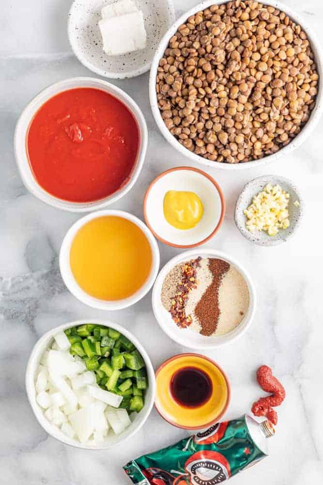 ingredients needed for vegetarian sloppy joes
